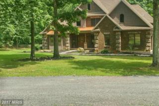 9614 Circle Drive, Chambersburg, PA 17202 (#FL9563287) :: LoCoMusings