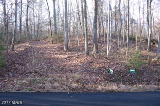 Free State Road, Marshall, VA 20115 (#FQ9527734) :: Pearson Smith Realty