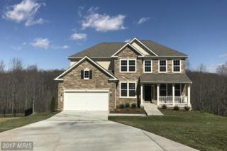 6119 Yeager Court, New Market, MD 21774 (#FR9600017) :: Pearson Smith Realty