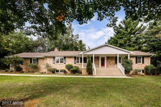 10718 Pheasant Drive, Clarksburg, MD 20871 (#FR9783974) :: LoCoMusings