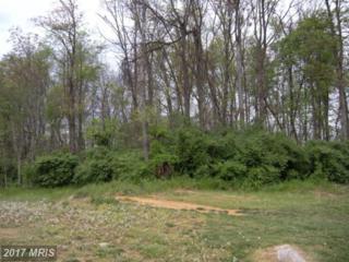 LOT 4 Joline Drive, Clear Brook, VA 22624 (#FV7824709) :: LoCoMusings