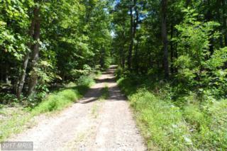 Hunters Rd, Gore, VA 22637 (#FV8163090) :: LoCoMusings