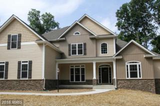 Apple Pie Ridge Road, Winchester, VA 22603 (#FV8185864) :: Pearson Smith Realty
