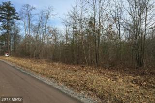 New Hope Road, Cross Junction, VA 22625 (#FV8548147) :: LoCoMusings