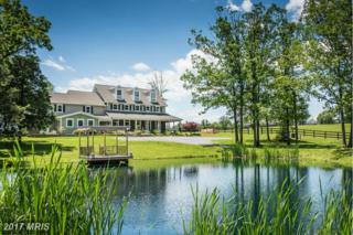 526 Middle Fork Road, Cross Junction, VA 22625 (#FV9620778) :: Pearson Smith Realty