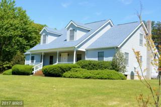 344 Goodearth Lane, Gore, VA 22637 (#FV9658421) :: Pearson Smith Realty