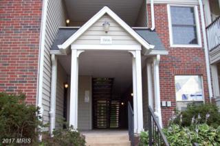3906 Penderview Drive #704, Fairfax, VA 22033 (#FX9738623) :: Pearson Smith Realty