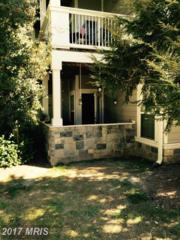 1720 Lake Shore Crest Drive #12, Reston, VA 20190 (#FX9784609) :: Pearson Smith Realty