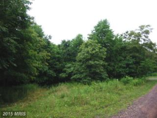 Westview Crossing Road, Grantsville, MD 21536 (#GA7883180) :: Pearson Smith Realty