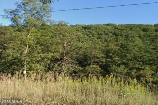 2 Upper Skaggs Run Road, Moorefield, WV 26836 (#HD8446356) :: LoCoMusings