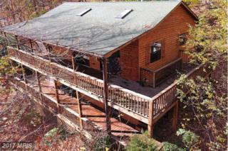593 Stonewall Trail, Mathias, WV 26812 (#HD9678724) :: LoCoMusings