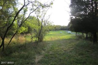 29 Old Mountain Run, Purgitsville, WV 26852 (#HS8285803) :: LoCoMusings