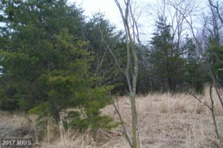 Proctor Road, Purgitsville, WV 26852 (#HS8561664) :: Pearson Smith Realty