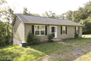 970 Hazel Lane, Augusta, WV 26704 (#HS9757537) :: Pearson Smith Realty