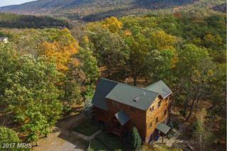 693 Bobcat Hollow Road, Romney, WV 26757 (#HS9789189) :: Pearson Smith Realty