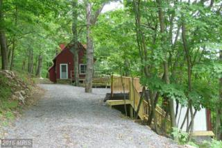 6 Off Route 220 / High Knob, Purgitsville, WV 26852 (#HS9790297) :: Pearson Smith Realty