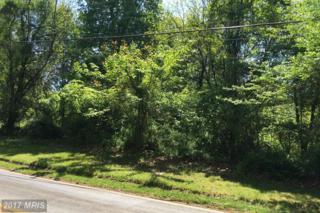 14885 Triadelphia Road SE, Glenelg, MD 21737 (#HW9544676) :: LoCoMusings