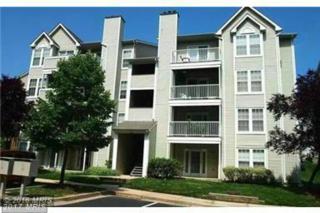 6330 Bayberry Court #812, Elkridge, MD 21075 (#HW9650623) :: Pearson Smith Realty