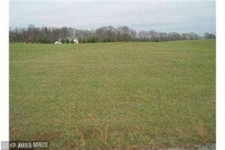 1 Trough Bend Lane, Shepherdstown, WV 25443 (#JF8126337) :: LoCoMusings