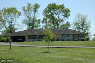 24419 Evergreen Mills Road, Aldie, VA 20105 (#LO6758250) :: LoCoMusings