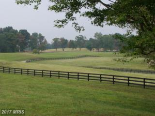 36987 Mountville Road, Middleburg, VA 20117 (#LO7644042) :: LoCoMusings