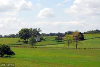 Fred Warren Lane, Middleburg, VA 20117 (#LO8048560) :: Pearson Smith Realty