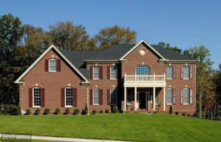 0 Running Colt Place, Leesburg, VA 20175 (#LO8619444) :: Pearson Smith Realty