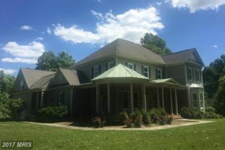 23154 Dover Road, Middleburg, VA 20117 (#LO9597631) :: Pearson Smith Realty