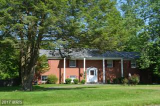 23280 Dover Road, Middleburg, VA 20117 (#LO9667343) :: Pearson Smith Realty