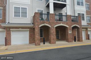 20804 Noble Terrace #206, Sterling, VA 20165 (#LO9773324) :: Pearson Smith Realty