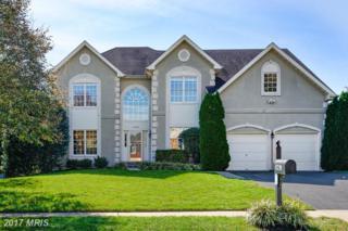 43799 Michener Drive, Ashburn, VA 20147 (#LO9796425) :: Pearson Smith Realty