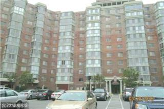 3100 Leisure World Boulevard #214, Silver Spring, MD 20906 (#MC9783693) :: LoCoMusings
