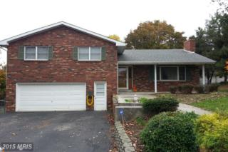 313 Dunn Drive, Fort Ashby, WV 26719 (#MI8491484) :: Pearson Smith Realty