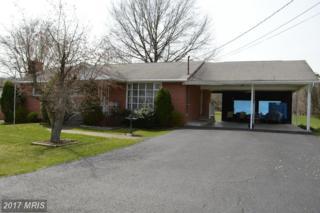 203 Mountain View Drive, Keyser, WV 26726 (#MI9611086) :: Pearson Smith Realty