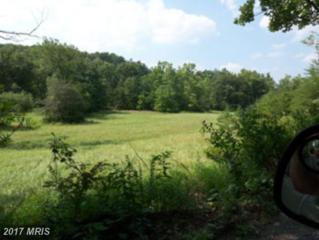 Posey Hollow Road, Berkeley Springs, WV 25411 (#MO7131594) :: Pearson Smith Realty