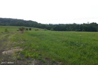 LOT 2 Winchester Grade Road, Berkeley Springs, WV 25411 (#MO8234107) :: LoCoMusings