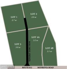 Glenwood Lane, Orange, VA 22960 (#OR8273973) :: LoCoMusings
