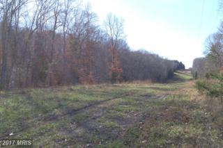 New Hampshire Road, Rhoadesville, VA 22542 (#OR9526526) :: LoCoMusings