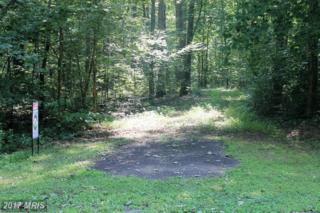 Morel Way, Rhoadesville, VA 22542 (#OR9721020) :: Pearson Smith Realty
