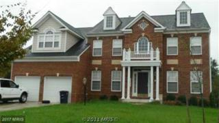 10911 Hackberry Court, Clinton, MD 20735 (#PG8618721) :: LoCoMusings
