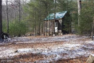 36 Waterline Drive, Upper Tract, WV 26866 (#PT9557044) :: Pearson Smith Realty