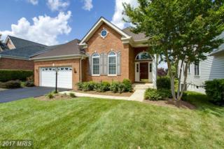 15242 Brier Creek Drive, Haymarket, VA 20169 (#PW9712151) :: Pearson Smith Realty