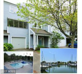 102 Harbour Sound Drive, Chester, MD 21619 (#QA9650128) :: Pearson Smith Realty