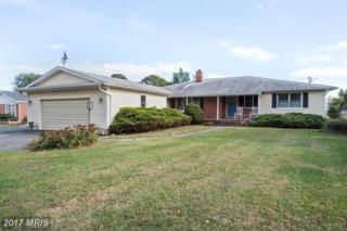 121 Allegany Road, Stevensville, MD 21666 (#QA9801588) :: Pearson Smith Realty
