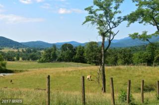 Reality Farm Lane, Washington, VA 22747 (#RP9631811) :: LoCoMusings