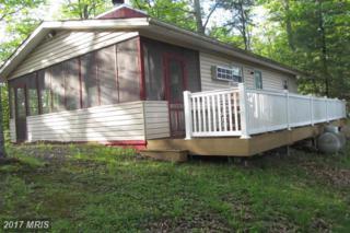 1504 Supinlick Ridge Road, Mount Jackson, VA 22842 (#SH8345879) :: LoCoMusings