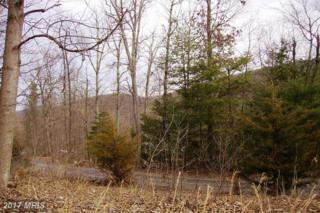 0 Mine Mountain Lane, Fort Valley, VA 22652 (#SH8551394) :: LoCoMusings