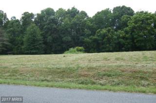 LOT 5 River Drive N, Woodstock, VA 22664 (#SH9524467) :: Pearson Smith Realty
