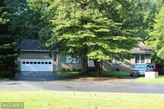 39501 Thomas Drive, Mechanicsville, MD 20659 (#SM9757742) :: Pearson Smith Realty