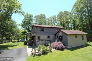 41975 Gibson Drive, Mechanicsville, MD 20659 (#SM9856175) :: Pearson Smith Realty